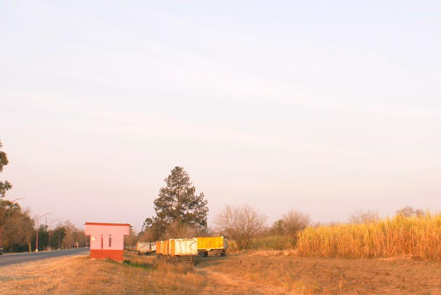 Paisaje con cañaveral, parada de colectivo, ruta y un camión