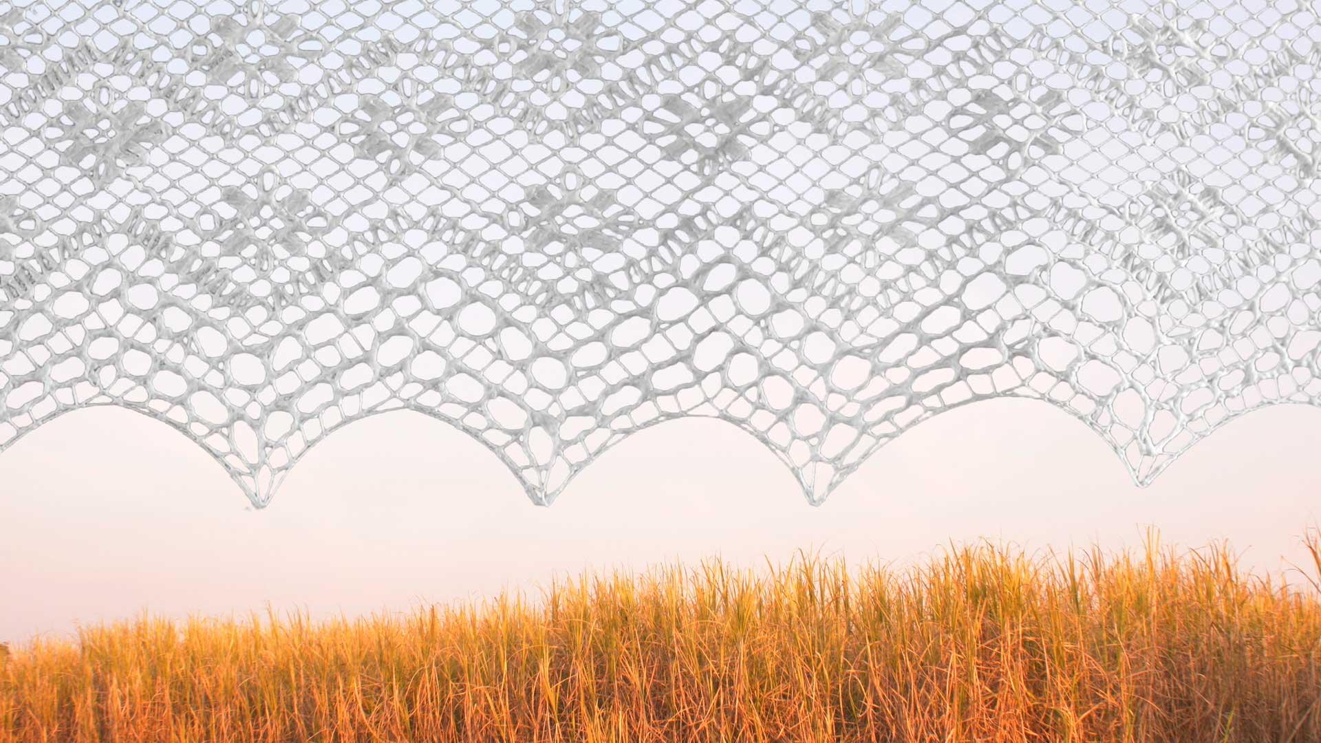 Textil sobre paisaje de cañaveral